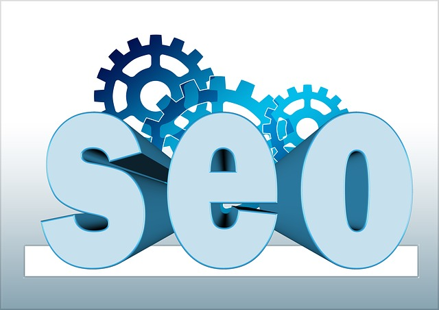 SEO to increase your search presence, SERP